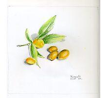 Kumquats Photographic Print