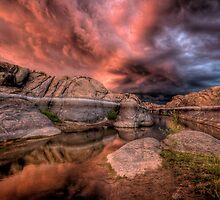 Bobageddon by Bob Larson