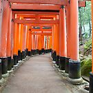 Fushimi Inari Shrine by F.M. Gore-Kelly