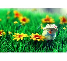 Happy Easter Photographic Print