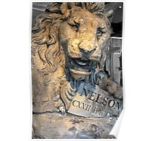 The Nelson Lion Poster