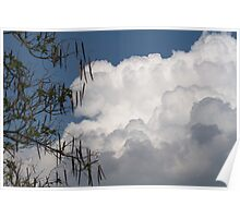 clouds in the sky Poster
