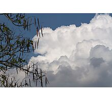 clouds in the sky Photographic Print