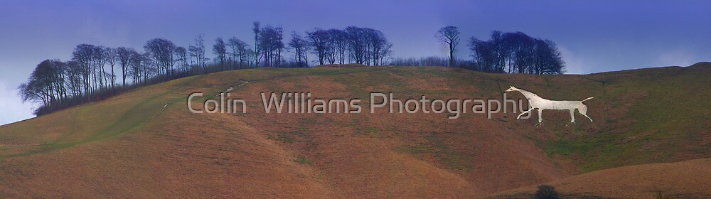 The Cherhill White Horse- Whiltshire  by Colin  Williams Photography