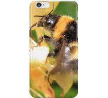 Bumble on the honeysuckle iPhone Case/Skin