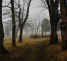 Bannerman Park by Brian Scott