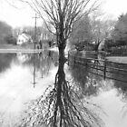 Flood 2010 by Scott Curti
