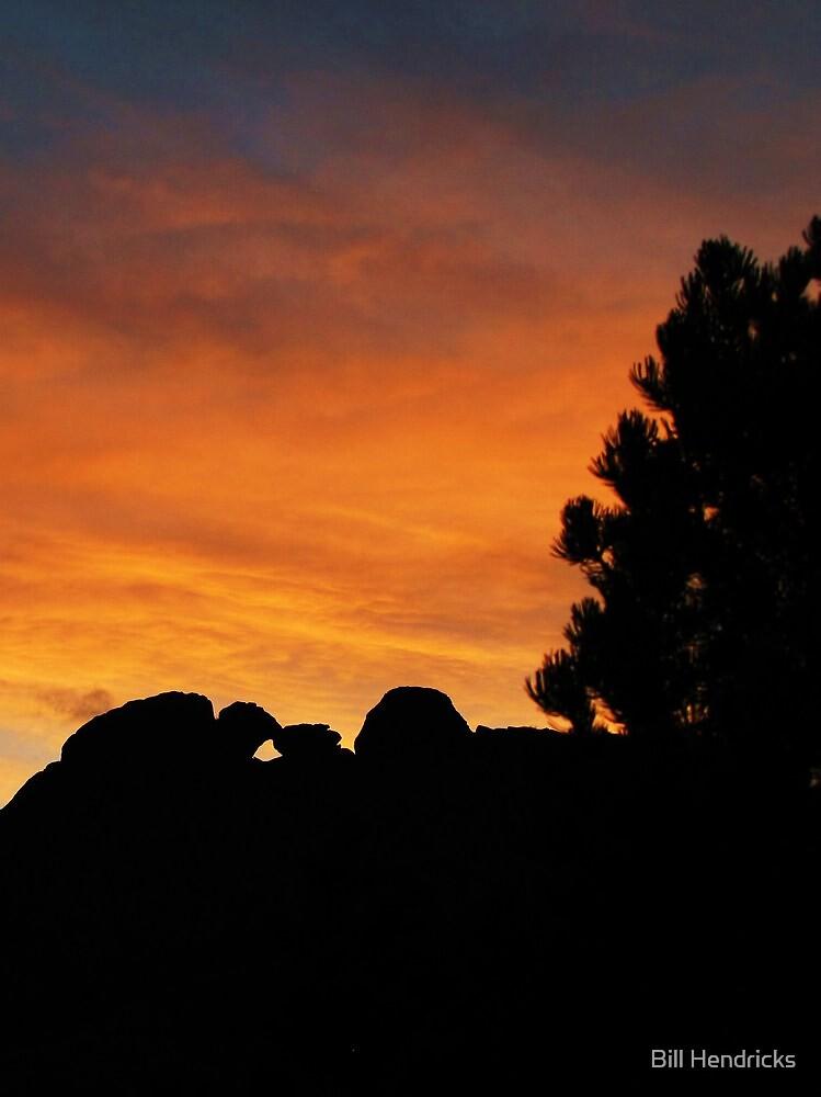 Sunset over Kissing Camels by Bill Hendricks