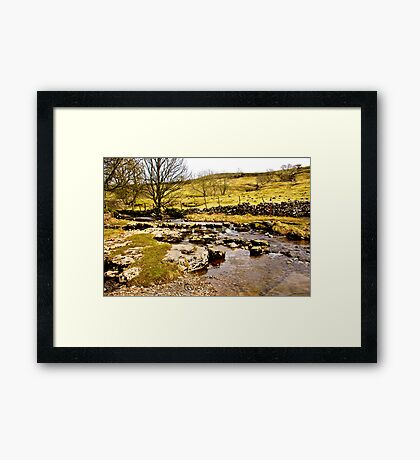 Cray Gill Stepping Stones Framed Print