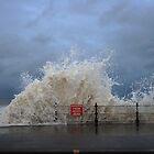 Heavy Seas by EarlCVans