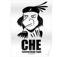 CHE- Crested Hawk Eagle Poster
