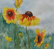 Black-eyed Susans by Kay Hale