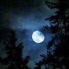 Blue night by skreklow