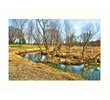 Meandering Creek Art Print