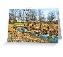 Meandering Creek Greeting Card