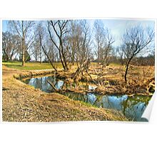 Meandering Creek Poster