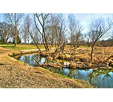 Meandering Creek Photographic Print