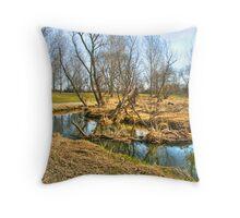 Meandering Creek Throw Pillow