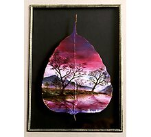 Purple Peace Photographic Print