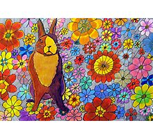 306 - FLORAL BUNNY - DAVE EDWARDS - COLOURED PENCIL & INK - 2010 Photographic Print