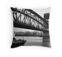 Roosevelt's Pass Throw Pillow