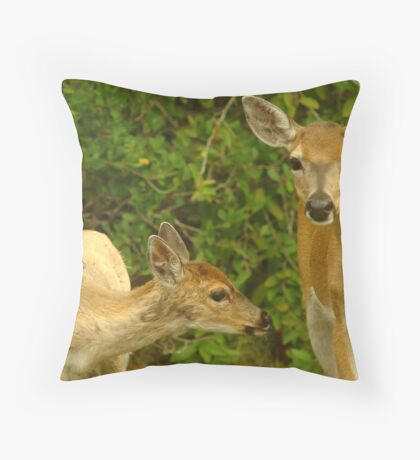 Key Deer and Fawn Throw Pillow