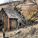 The Dalles Mountain Road  ( 4 )  The Old Barn by Larry Davis
