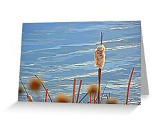Rushes and Reeds Greeting Card