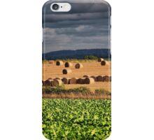 Roughage iPhone Case/Skin