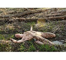 Spring Thaw - Naked In The Mud Photographic Print