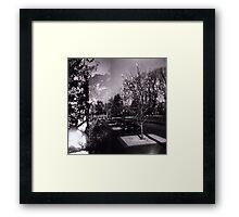Bloom trees in Carlton Framed Print