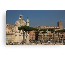 Rome - Umbrella Pines and Sunshine  Canvas Print