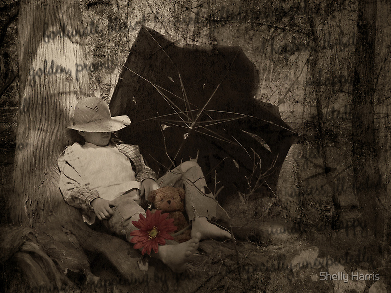 A Fortunate Teddy by Shelly Harris