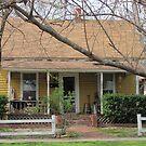 I like this house! by carol selchert