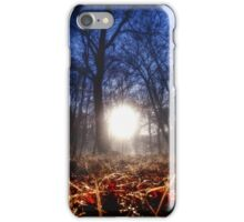 Autumn in Epping Forest iPhone Case/Skin