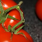Tomatoes on the Vine by Natalie Whatley