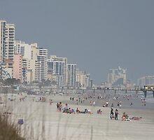 Sunny March Beach Day by Deborah  Benoit
