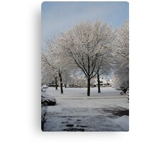 Snow Tree - Münster Canvas Print