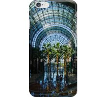 Reflecting on Palm Trees and Arches iPhone Case/Skin