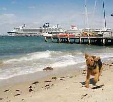 Cappa at Port Melbourne by Marie Watt