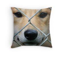 Wild But Not Free Throw Pillow