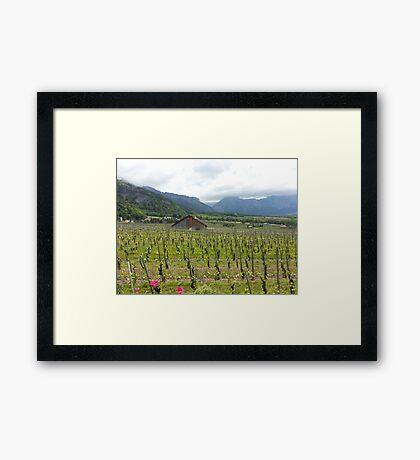 Majestic Scene Framed Print