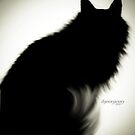 The Royal Silhouette  by ibjennyjenny