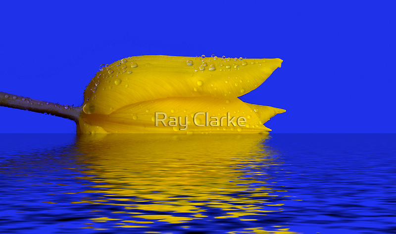 Going Under by Ray Clarke