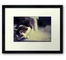 my furry friend Framed Print