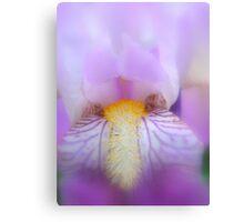 Deep purple softness Canvas Print
