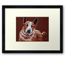 Murphy, The Cow Dog Framed Print