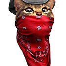 CAT ROBBER by MEDIACORPSE