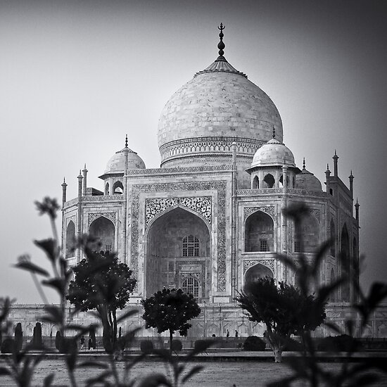 Mausoleum of Mumtaz - Taj Mahal by Andrew To