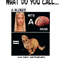 A Blonde with a Brain? by aivlys